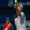 ATP Men's Tennis Championships, Dubai