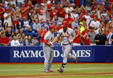 Cardinals Rays Baseball