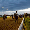 Riders and race horses make their way around the track during morning training before the 139th Kentucky Derby at Churchill Downs in Louisville on Saturday. Staff photo by Christopher Fryer