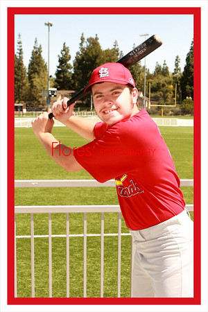 2014 ML Cardinals 4x6 04