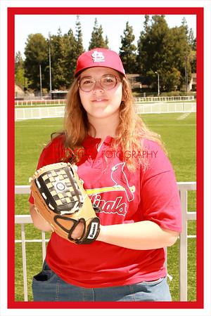 2014 ML Cardinals 4x6 01