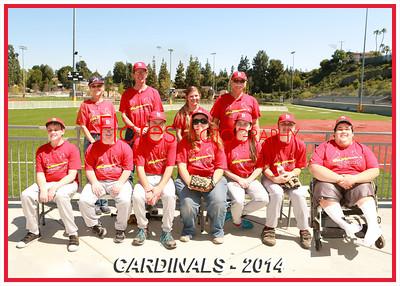 ML Cardinals