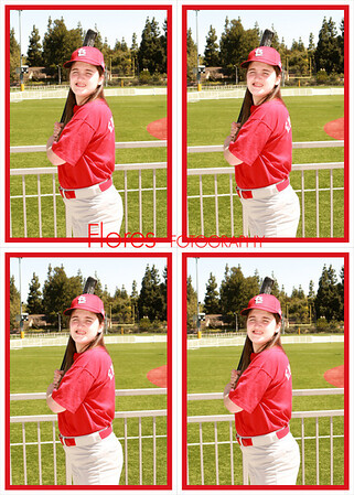 2014 ML Cardinals 5x7 06
