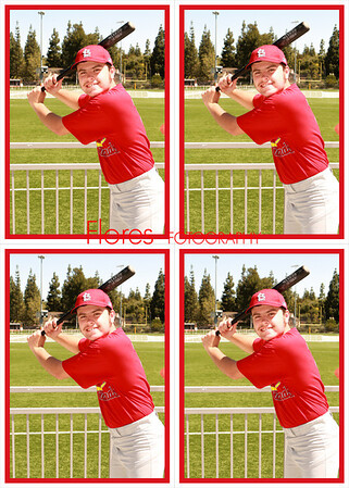 2014 ML Cardinals 5x7 04