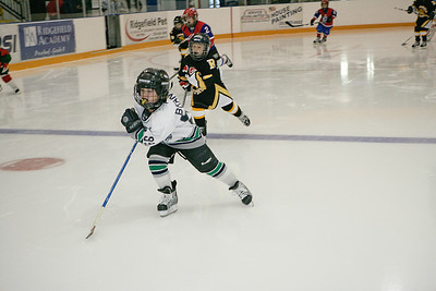 Fischer Williams Photo - Ridgefield Mites Hockey Jamboree0050