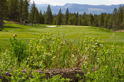 #5, The Ridge @ Copper Point. June 2011.