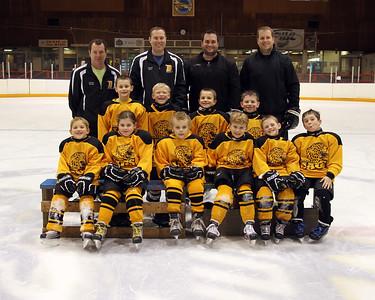 Mite Team Gold