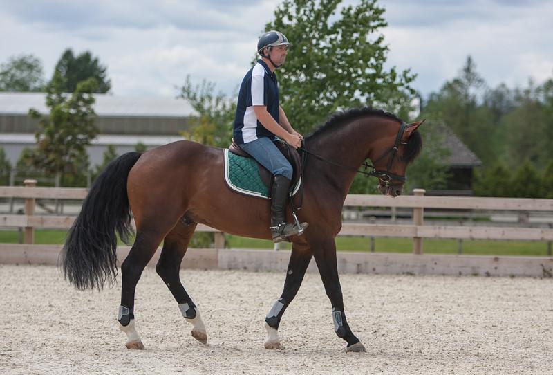 Gary on stallion