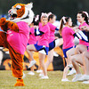 Commerce, Okla., High School's tiger mascot and the cheerleaders perform for the crowd wearing pink for breast cancer awareness month prior to Thursday night's game, Oct. 17, 2013.<br /> Globe | T. Rob Brown