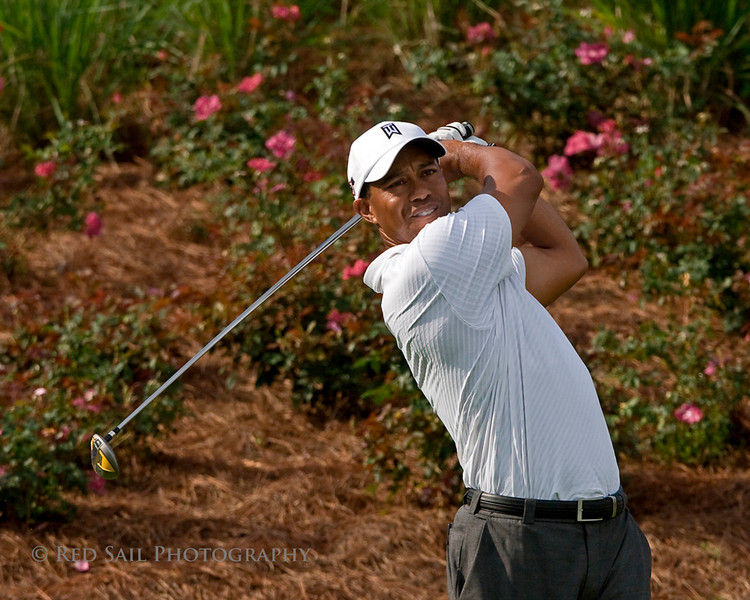 Tiger Woods at TPC