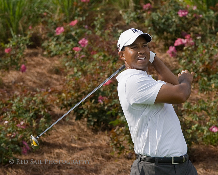 Tiger Woods at the TPC, Sawgrass in Ponte Vedra Beach