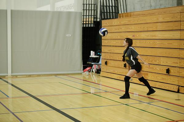 Timberwolf Volleyball