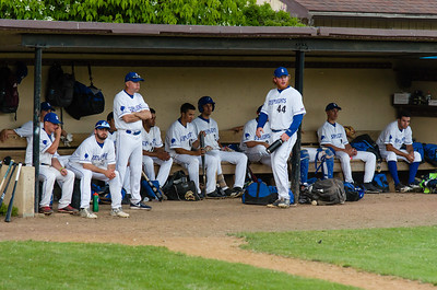 Steeplecats players celebrate with James Ciliento (4) after he scored in the fifth inning.