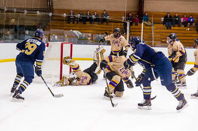 Michael Pinios (31) dives across the net to make a save on a Dylan Healey shot in the first period Friday.