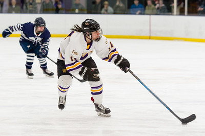 Amanda Reisman (14) carries the puck into the offensive zone.