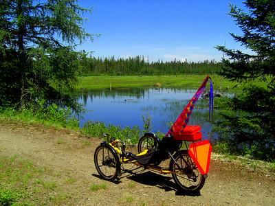 Bdale Trail, june 20, 2013 CIMG8824