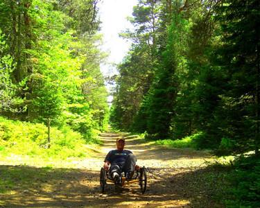 Bdale trail, june 15, 2013 CIMG8812sws