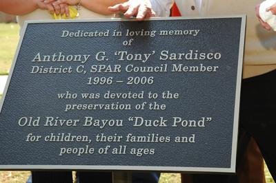 Tony Sardisco Duck Pond