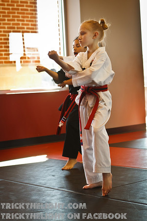 Black Belt Test-26
