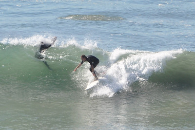 Torrey Pines Surf 11/3/10