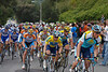 Rounding the bend and reaching the top of the hill. The tail of Team Astana. Lance Armstorng is in the yellow and black helmet with the black bike. E-3 and 50-200 mm f/2.8-3.5 lens at 50 mm, ISO 400, f/5, 1/400 sec.