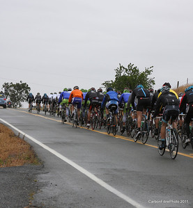 Stage 3, Peloton, Pony Brown Road.