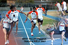 t&f collage 2 30 X20 Poster