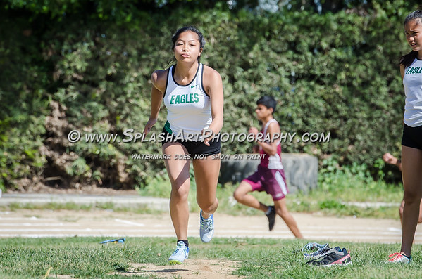 2017 Eagle Rock Track vs Bravo vs Wilson