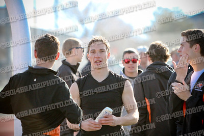 dhstrack2014-3978