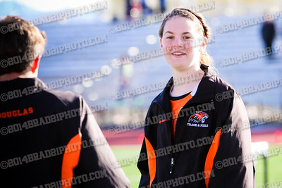 dhstrack2014-3989