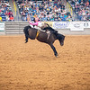 Ty Fast Taypotat scores an 80 at Amarillo Tri State Fair and Rodeo closing night. September 22, 2018 [Shaie Williams for Amarillo Globe News]