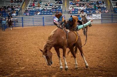 Tri State Fair Rodeo PRCA 2017