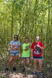 Jasmine, Hannah, and Addie in the bamboo forest