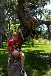 Addison, Hannah, and Jasmine scaling a leaning tree