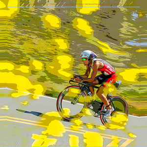 An artistic rendering of a racer speeding past mustard flowers bordering the road during the cycling stage of the Long Course Wildflower Triathlon.