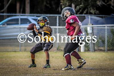 Lakewood Spartans Vs. Sarasota Seminoles (7/8 PeeWee)