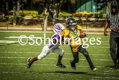 Tampa Ravens vs Tampa Bay Jaguars (PeeWee) 2016