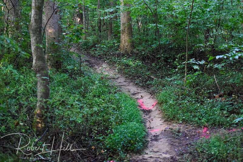 Hobby Trails To You