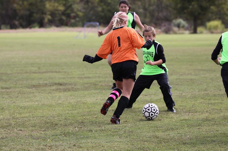 soccer u 14 tigers gm 3(5)f-09 044