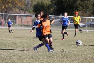 soccer u 14 tigers gm 8 f-09 018