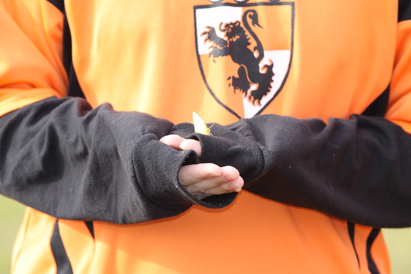 soccer u 14 tigers gm 4(6)f-09 001