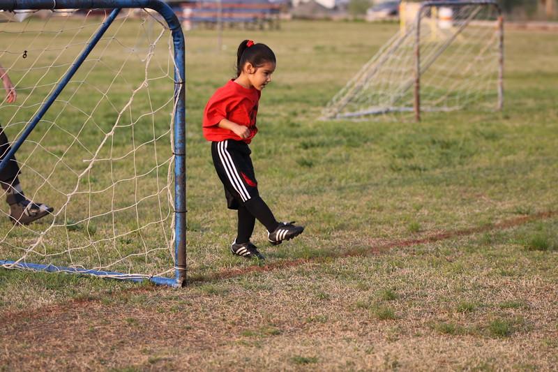 soccer u 6 ladybugs team-game s09 052