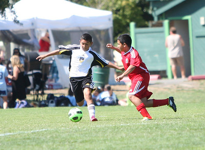 U12 Boys Arsenal- Suntan Classic Tournament