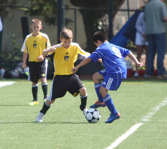 U12 Boys Benicia Arsenal Breakers Cup