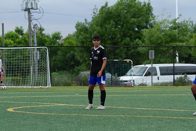 MLS-1006