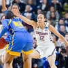 F:\DPF\UConn Women's Basketball vs. UCLA #3056 March 25, 2017.jpg\UConn #12/Michael Zaritheny