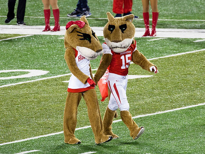 Sasha and Shasta, strut on to the field for UH ...