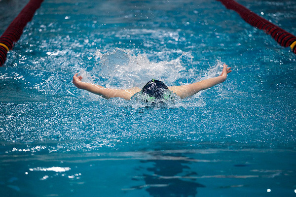UIC Swim