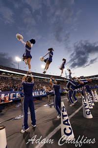 The University of Kentucky Dance Cats Performing during the first half of the UK vs. Kent State football game at Commonwealth Stadium, Photo by Adam Chaffins