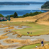 Hole #14, Chambers Bay, US Open Championship